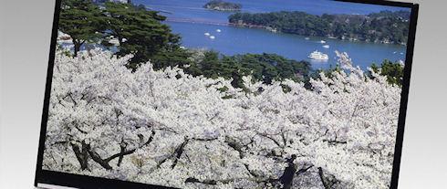 Japan Display представила энергоэффективные 4K2K-дисплеи