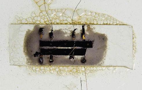 Первый микрочип выставлен на аукцион за 1 млн долларов
