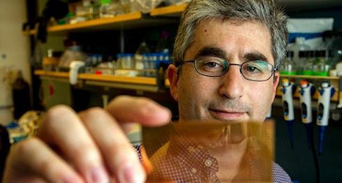 Ученые создали микрочип для диагностики диабета
