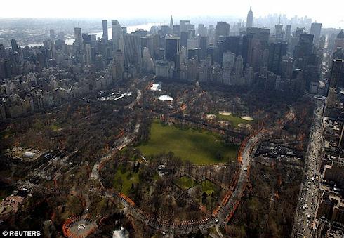 В Нью-Йорке обнаружены тысячи неизвестных науке микроорганизмов