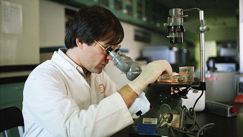 Нанороботы будут бороться с раком на начальной стадии