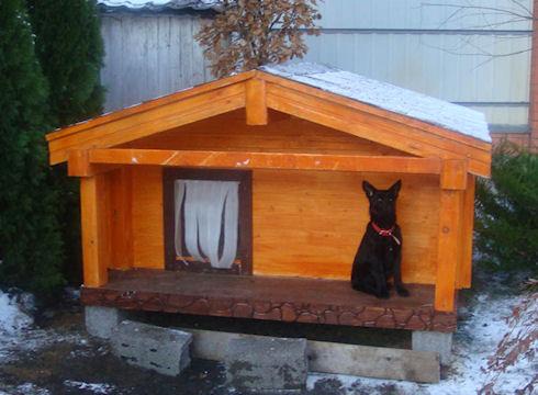 Постройка будки для собаки