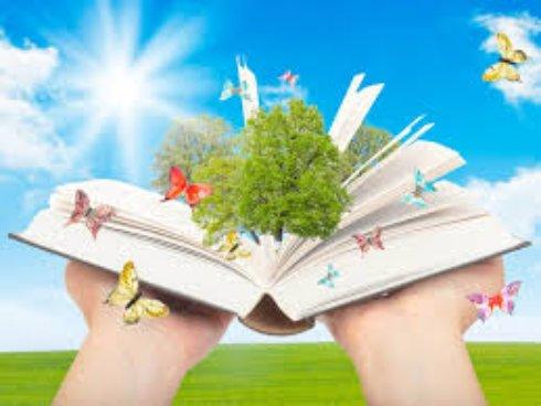 Давайте почитаем – знакомство с книгой