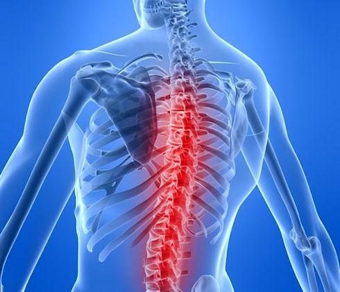 Позвоночник: диагностика болезней и квалифицированное лечение