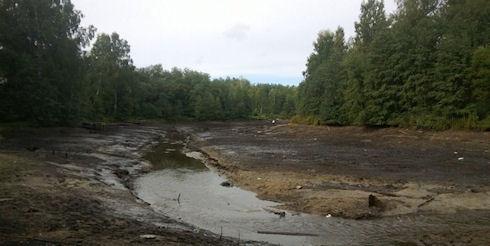 Экологическая катастрофа из-за гибели реки Грузинка