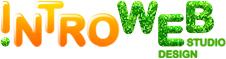 Сайты от IntroWeb – красиво, быстро, эффективно!