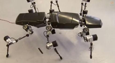Изобретён робот-насекомое