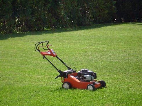 Как подобрать газонокосилку для своего участка?