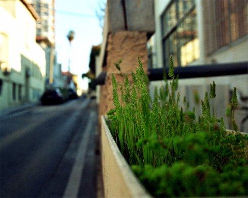 Как разобраться в португальских объявлениях о сдаче квартир?
