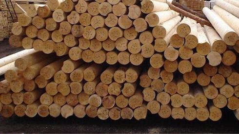 Кругляк - только натуральная древесина