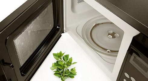 Мини-печь или микроволновка. Как выбрать