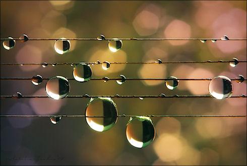 Музыка как средство воспитания