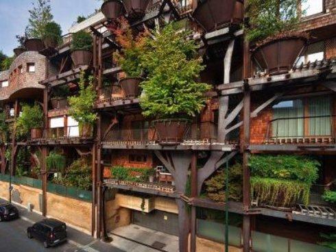 Дом из живых деревьев. Итальянские дизайнеры сотворили чудо.
