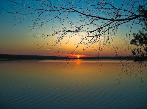 Фестиваль «Оранжевое солнце» приедет в Севастополь