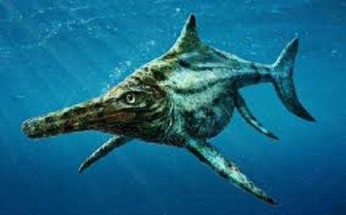 Останки древней рептилии, найденные в Шотландии, потрясли ученых