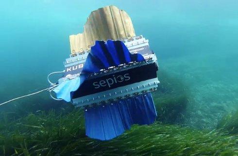 Робот-рыба улучшит подводную съёмку