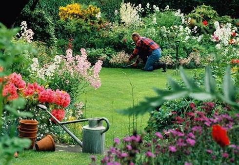 Садовый инвентарь: как выбрать, где покупать, как хранить
