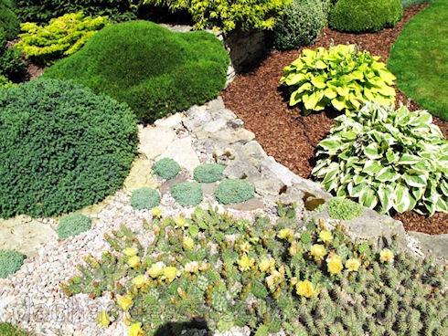 Создаем необычный сад