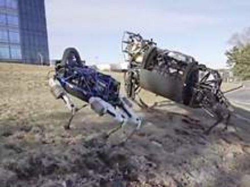 Создана первая собака-робот, которого можно брать с собой на прогулки (ВИДЕО)