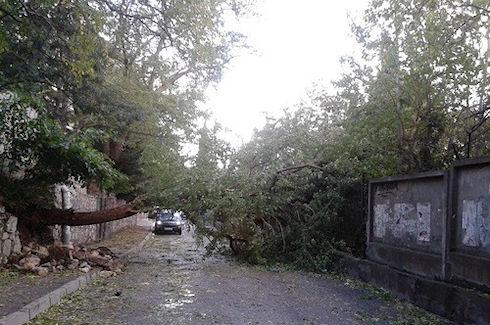В Ялте прошел ураган, оставив после себя последствия