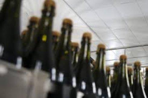 Винные напитки получат новые акцизные марки